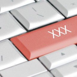 Trend di ricerca di siti per adulti nel 2015: uno studio