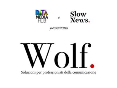 Email marketing e contenuti: il progetto Wolf
