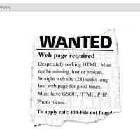 errore 404_limpfish