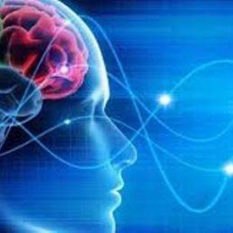 Parole, cervello e azioni: si influenzano?