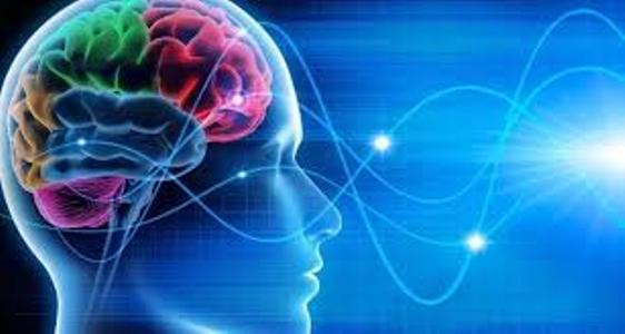 Parole, cervello e azioni: come si influenzano?