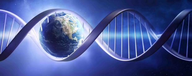 Intraprendere un viaggio partendo dal proprio DNA