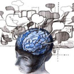 Bias cognitivi, dalla psicologia al marketing