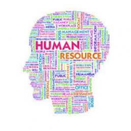 Paradox navigator e capitale umano: la nuova competenza per le HR