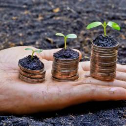 Voucher per la digitalizzazione delle PMI: come richiederli