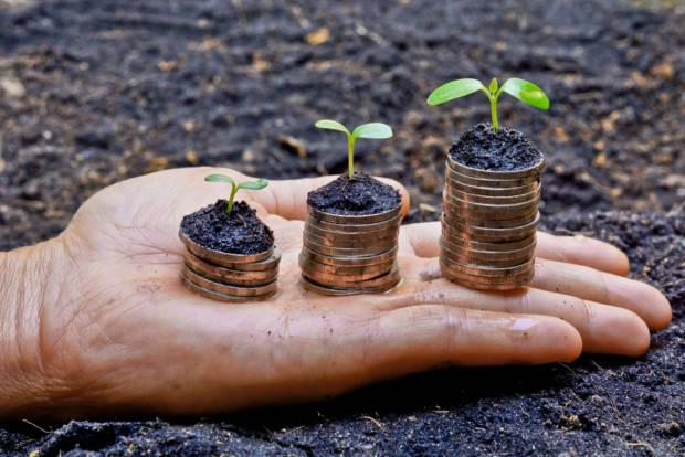 Come richiedere i voucher per la digitalizzazione delle PMI?