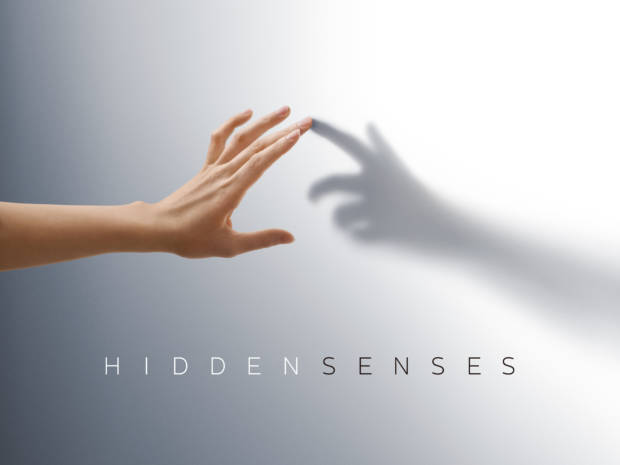 sinestesia Sony