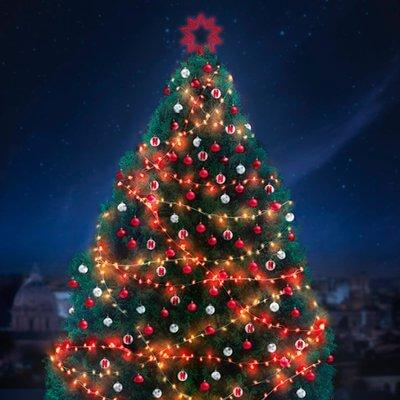 Spelacchio, Netflix e l'arte di essere unici: cosa insegna l'albero di Natale di Roma 2018