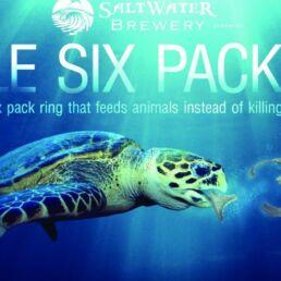 Packaging senza plastica contro l'inquinamento