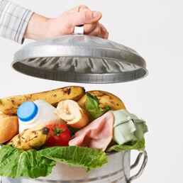 Sostenibilità nel settore food: dai ristoranti alle app