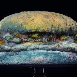 whopper ammuffito di burger king campagna pubblicitaria 2020