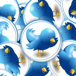 twitter ha bloccato account fake